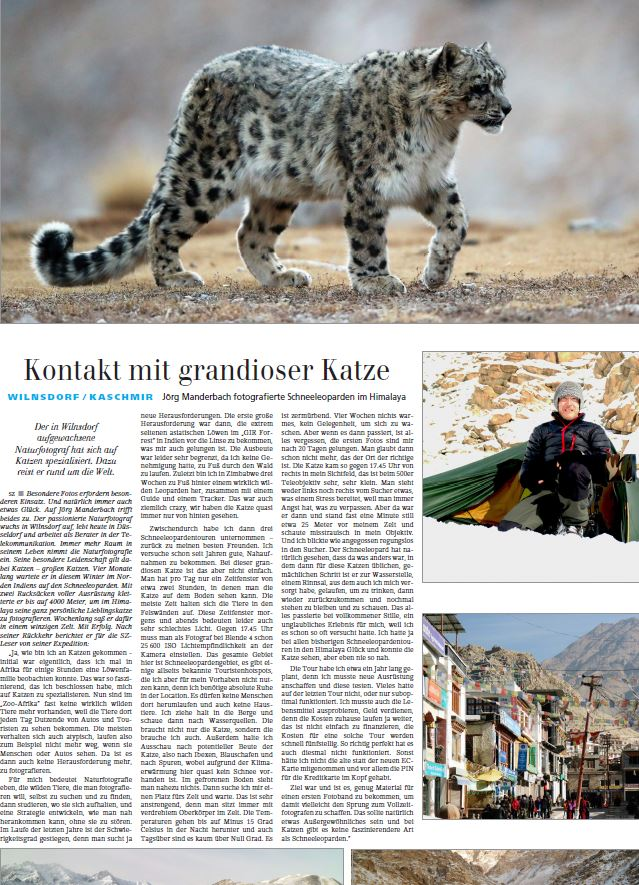 Artikel in der Siegener-Zeitung über die mehrmonatige Schneeleoparden-Tour des Naturfotografen Jörg Manderbach - Press article about sucessfull snow leopard tour at the Himalayas by German nature photographer Joerg Manderbach